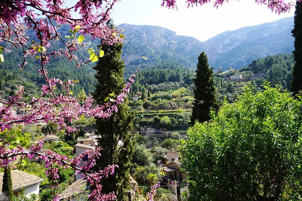 Mallorca Nachhaltig